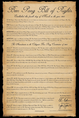 Bill of Rights Poster Poster